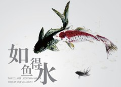 Chinese idioms, 如鱼得水, to feel like a fish in water
